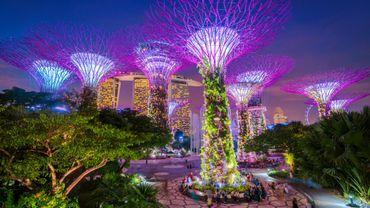 Singapour, la ville jardin