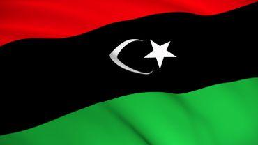 """L'ONU """"consternée"""" par la condamnation d'un journaliste à 15 ans de prison en Lybie"""
