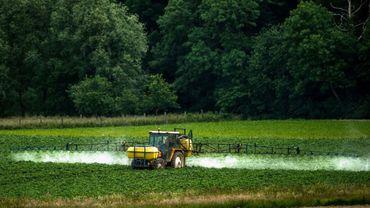 Une vaste étude scientifique sur l'exposition aux pesticides des riverains avait révélé des taux anormalement élevés dans les cours d'écoles et dans les jardins (illustration).