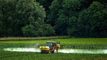 Glyphosate: toujours pas d'unanimité parmi les Etats membres