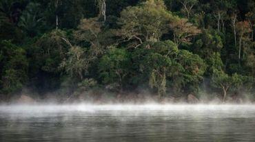 De la brume flotte à la surface du rio Xingu dans l'Etat du Parà au nord du Brésil, le 7 août 2013