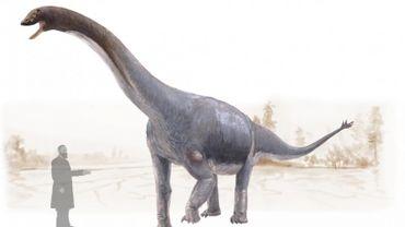 Les dinosaures ont aussi souffert de cancers, selon des chercheurs de l'ULiège et de la VUB