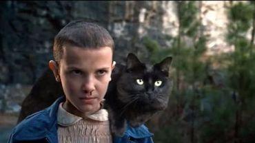 Des blockbusters réinventés avec la participation d'un adorable chat