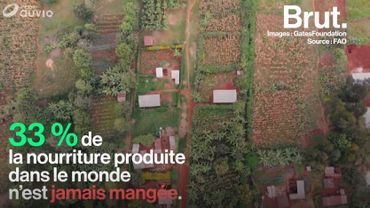 Pour lutter contre le gaspillage alimentaire, il aide les petits producteurs en Afrique subsaharienne