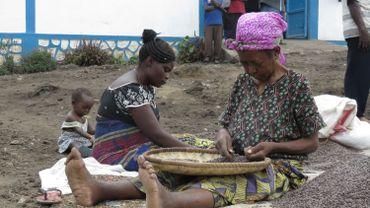 La création d'une coopérative paysanne qui regroupe des petits producteurs de la région a donné aux producteurs les outils pour générer un revenu décent.