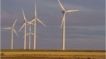 Illustration - Un nouveau projet éolien secoue la commune de Gouvy, avec une enquête publique qui se termine ce vendredi 2 décembre.