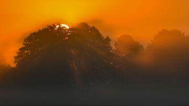Le soleil se lève par une matinée brumeuse à Muellrose, dans l'est de l'Allemagne, le 19 septembre 2017.
