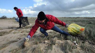 Des bénévoles s'étaient donné rendez-vous dans les dunes et sur la plage à la recherche de détritus.