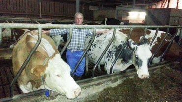 les vaches et les prisonniers