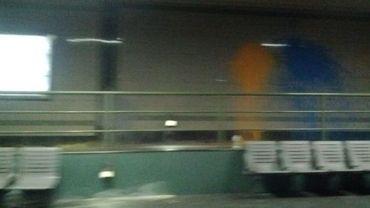 Huit jeunes se sont servis de ballons et de pots de peinture pour vandaliser les lieux.