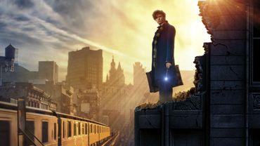 """""""Les Animaux fantastiques"""" prolongera l'univers de """"Harry Potter"""""""