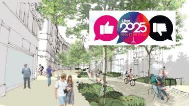 Parmi les projets les plus soutenus, plusieurs se trouvent au croisement des soucis de mobilité et de verdurisation de la ville