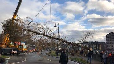 Une cinquantaine de forestiers bloquent l'un des ronds-points du centre-ville de Namur