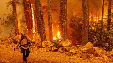 Incendies en Californie: l'aide aux victimes bloquée par l'administration Trump