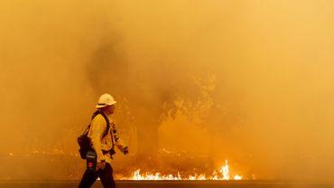 Le gouverneur californien demande l'aide de l'Australie et du Canada contre les incendies