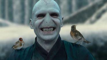 Voldemort sous un autre jour dans cette parodie du film Belle et la Bête