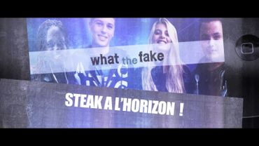 WTFake 2.07 : Un steak à l'horizon !