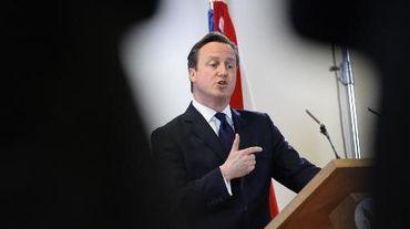 Le premier ministre britannique David Cameron lors d'une conférence de presse à Bruxelles le 20 décembre 2013