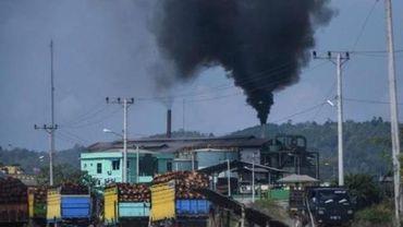 """Le biodiesel d'huile de palme, un """"remède"""" trop polluant"""