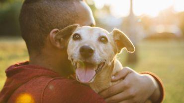 5 conseils pour prendre soin de son chien