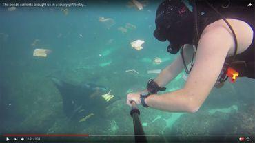 Un plongeur nage au milieu de centaines de déchets en plastique et autres détritus dans les eaux de Bali
