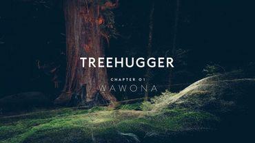 """""""Treehugger"""" : Le premier film olfactif en réalité virtuelle"""