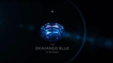Le plus gros diamant bleu jamais trouvé au Botswana, de 20,46 carats, a été présenté au public mercredi à Gaborone