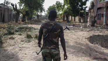 Niger: une cinquantaine de combattants de Boko Haram tués