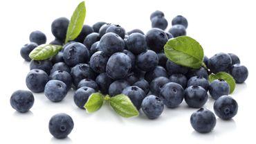 Myrtilles, pommes, thé : leurs anti-oxydants protègent de la prise de poids