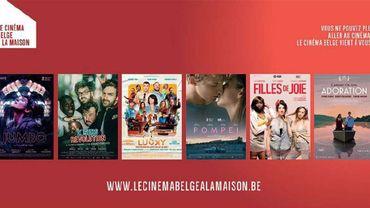 Le cinéma belge à la maison