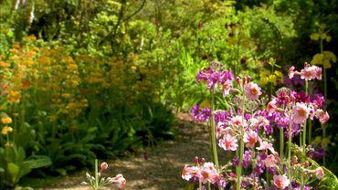 Furzey gardens n'est plus, comme à l'origine, uniquement un jardin de printemps