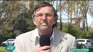 Castor Tougaux