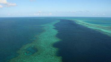 Vue aérienne de la Grande Barrière de corail au large des Iles Whitsunday, le 20 novembre 2014 en Australie