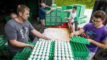 BASF ne veut plus vendre le fipronil comme pesticide
