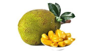 Le fruit du jacquier, une « viande sans viande »