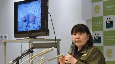 Mikako Kaneko, du zoo d'Ueno à Tokyo, montre un bébé panda lors d'une conférence de presse le 23 juin 2017 dans la capitale japonaise