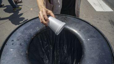 Les objectifs affichés par l'Europe visent à réduire de 50% les emballages en frigolite d'ici 2025