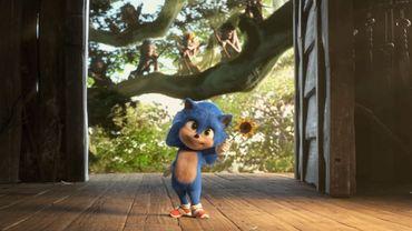 "Le ""Baby Sonic""."