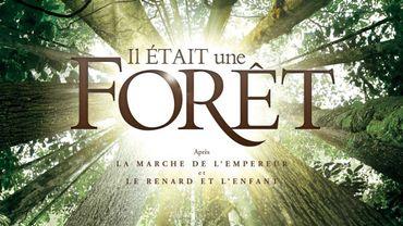 """""""Il était une forêt"""""""