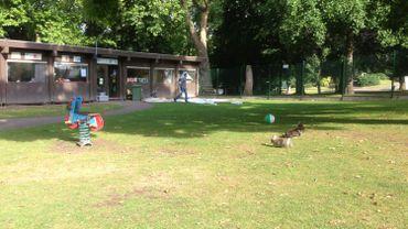Liège : l'école de la Boverie va devoir déménager