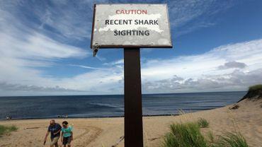 Un panneau d'avertissement sur la possible présence de requin a été installé en 2012 sur la plage de High Head à Cape Cod (Massachusetts, nord-est des Etats-Unis)