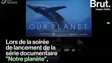 """Le naturaliste David Attenborough alerte sur l'""""extinction de masse"""" que connaît la Terre"""