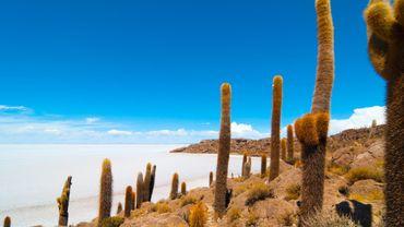 """""""Salar"""" de Uyuni, Bolivie"""