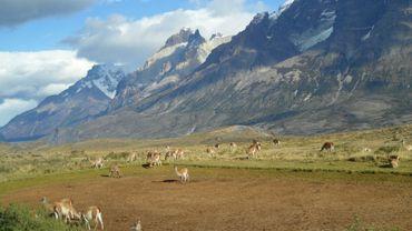 Des milliardaires en Patagonie