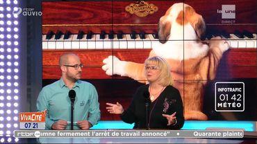 Le pouvoir de la musique sur les animaux