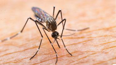 Lutter contre le paludisme depuis l'espace: l'ambition de la Nasa en Birmanie.
