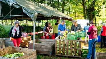 Des consommateurs locaux, des propriétaires et des dirigeants de la première ferme collective des Pays-Bas viennent récupérer leur part de la récolte, le 13 octobre 2018 à Boxtel, dans le sud des Pays-Bas