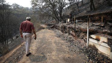 Les incendies ont ravagé cette partie du pays.