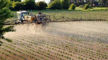 Les Wallons invités à donner leur avis sur le programme de réduction des pesticides