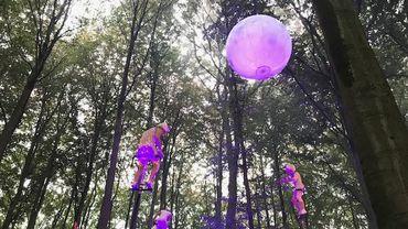 Des danseurs, évoluant sur des perches souples, au cœur d'un bois, une image qui a fasciné les spectateurs des Féeries de Beloeil